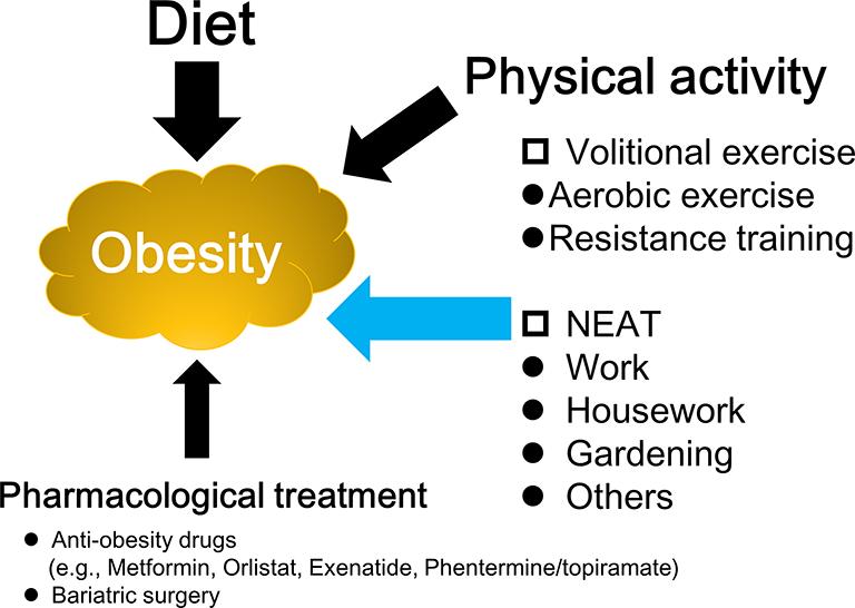 Συνδυασμός Διατροφής - Άσκησης